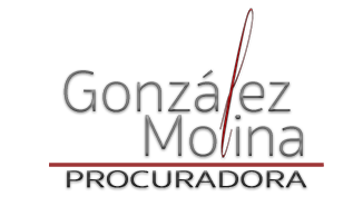 Procuradora de los Tribunales – Mª Angeles González Molina